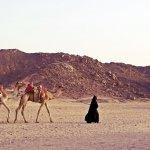 În Egipt cu Paralela 45 + tips & tricks
